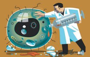 Antibióticos – Como funcionam? Lista de Indicações e Cuidados